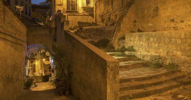 AL PALAZZO DELLE ARTI DI NAPOLI :  Vertebre di Lava  Le scale di Napoli nei secoli